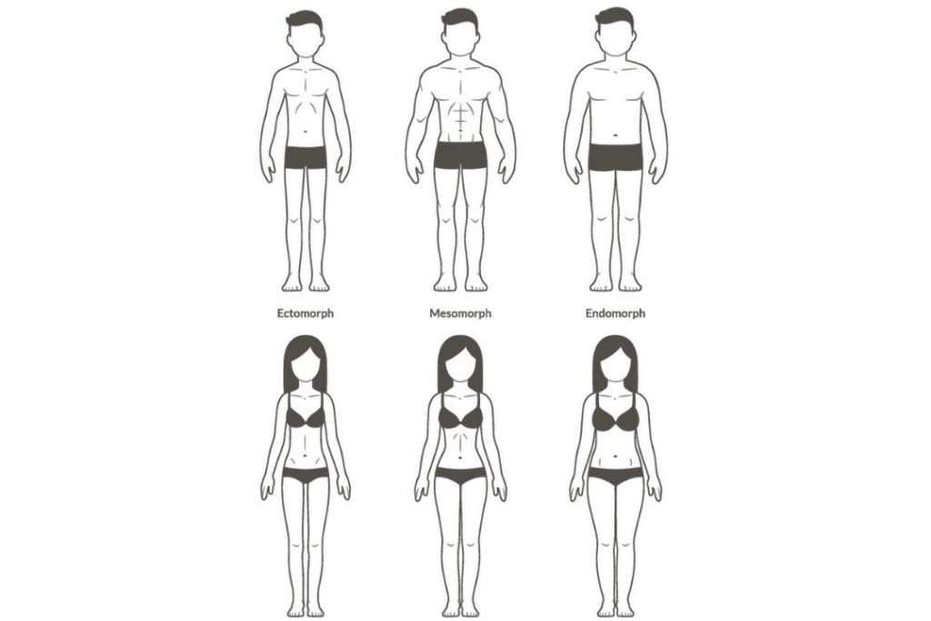 body types 1 e1599520242984