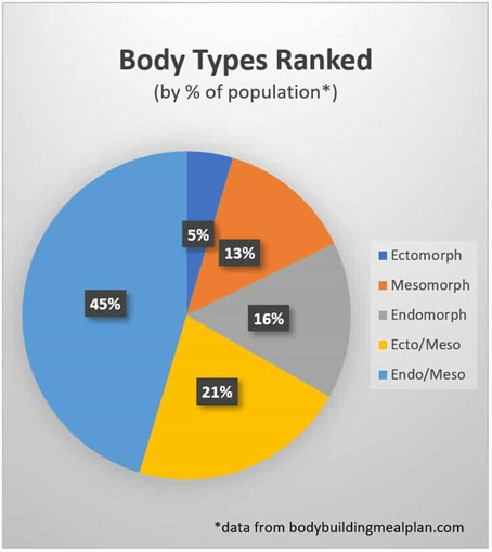 body types ranked